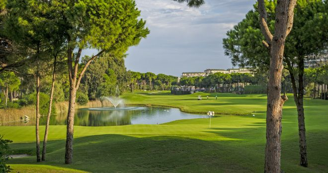 Golf Club Montgomerie Maxx Royal