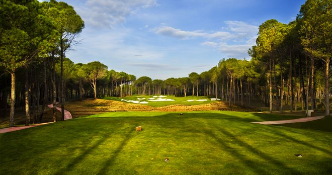 Golf Club Carya